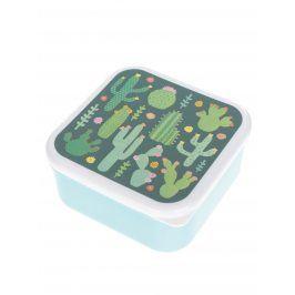 Tyrkysový box na jídlo s potiskem kaktusů Sass & Belle