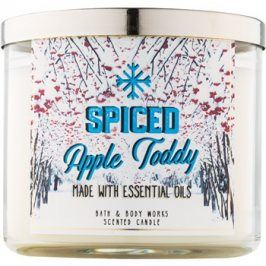 Bath & Body Works Camp Winter Spiced Apple Toddy vonná svíčka 411 g