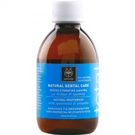 Apivita Natural Dental Care Total ústní voda  250 ml
