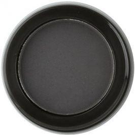Billion Dollar Brows Color & Control pudrový stín na obočí odstín Raven 2 g