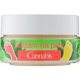 Bione Cosmetics Cannabis balzám na ztvrdlou pokožku na paty  150 ml