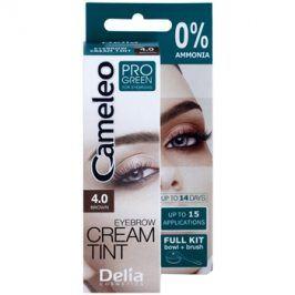 Delia Cosmetics Cameleo Pro Green barva na obočí bez amoniaku odstín 4.0 Brown 15 ml