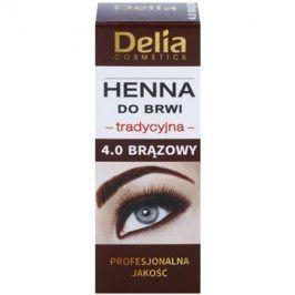 Delia Cosmetics Henna barva na obočí odstín 4.0 Brown 2 g + 2 ml
