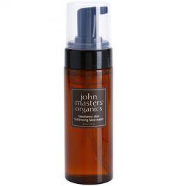 John Masters Organics Oily to Combination Skin čisticí pěna vyrovnávající tvorbu kožního mazu  177 ml
