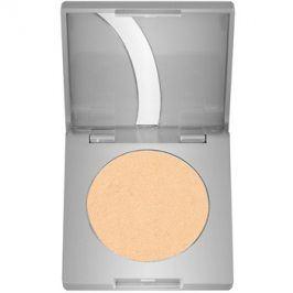 Kryolan Basic Eyes oční stíny odstín Soft Bronze G Iridescent 2,5 g