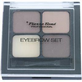 Pierre René Eyes Eyebrow paleta pro líčení obočí odstín 01 Brown 4,5 g