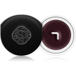 Shiseido Eyes Instroke Eyeliner gelové oční linky s aplikátorem odstín Nasubi Purple 4,5 g